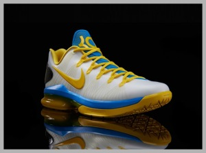 Nike-KD-V-Elite-585386-100_2