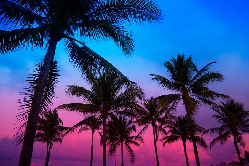 south_beach_nba.jpg